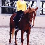 Débo na koniu